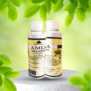 Amla Shampoo 200ml